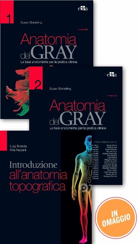 Anatomia del Gray. Le basi anatomiche per la pratica clinica. In 2 ...